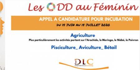 Appel à candidature pour incubation : Les ODD au féminin 2020