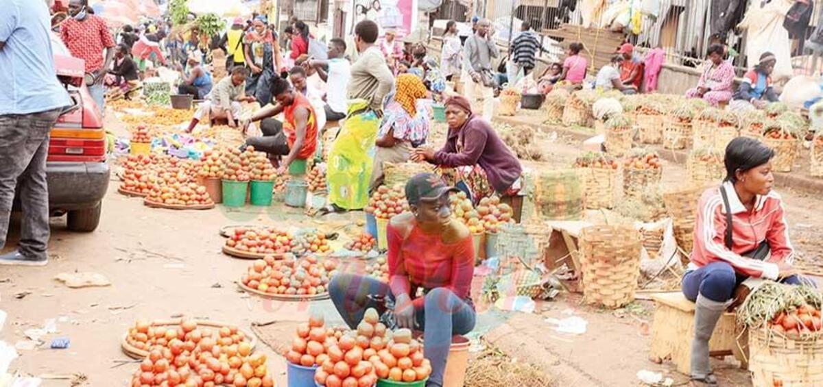 Mise en œuvre d'un système d'écoulement des produits agroalimentaires à travers un réseau commercial dans le but de faciliter les échanges entre les producteurs et les commerçants