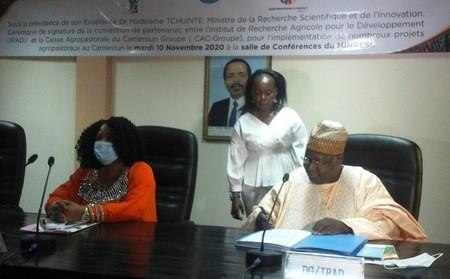 L'IRAD et la CAC-Groupe pactisent pour développer des chaînes de valeur agro-industrielles au Cameroun
